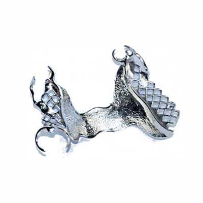 Prothèse squelettée métallique